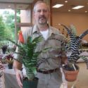 Bromeliads With Paul Wingert